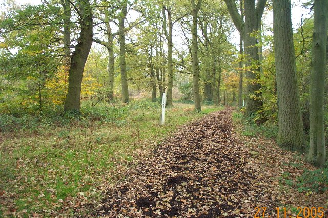 Stanmore Common: Bridleway