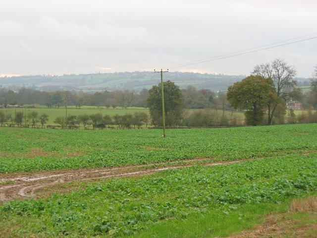 Fields, Bleathwood.