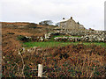 SW3932 : Cottages and old field hedges, near Carn Kenidjack by Sheila Russell