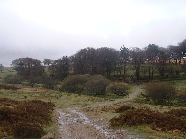 Path across the moor at Powder Mills