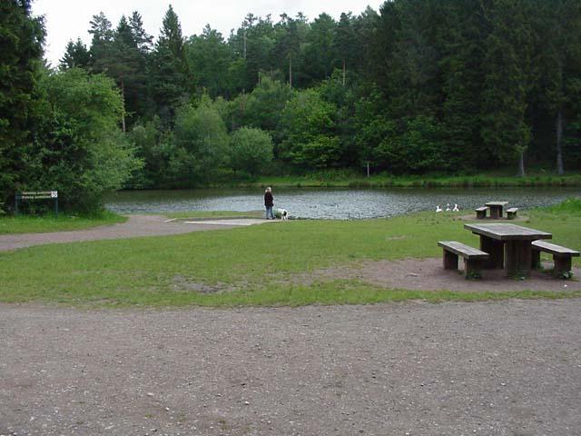 Mallard's Pike Lake
