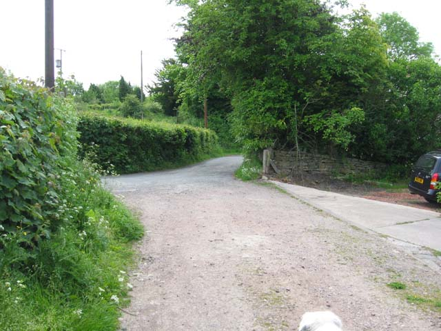 Road on Howle Hill