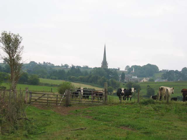 Field; Ruardean Church in the background