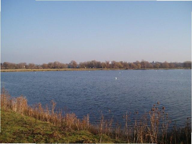 Clay-pit lakes behind Radwell