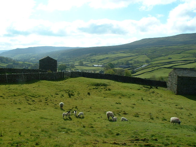Grazing Land near Thwaite