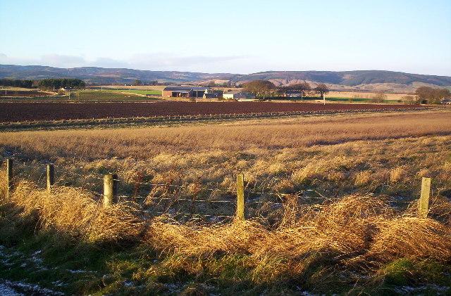 Blackiemuir Farm