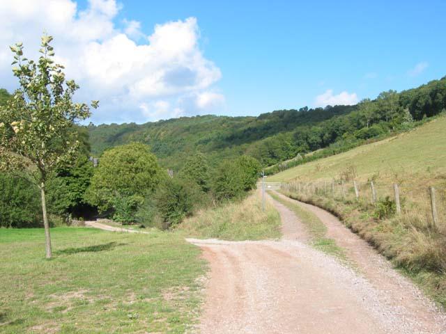 Country road near Redbrook
