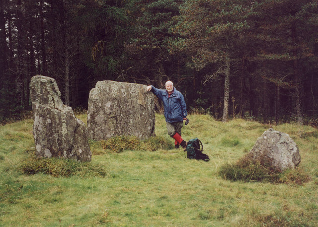 standing stones in the forest