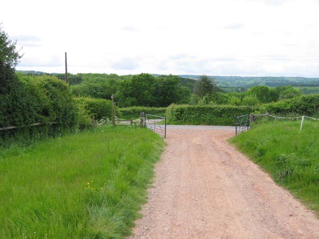 Country Road on Bulls Hill