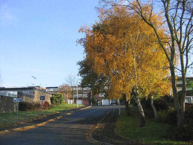 The Kingswood Estate, Vange