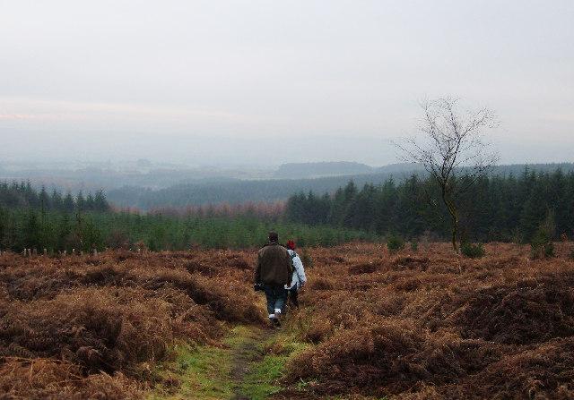 Leaving Longridge Fell