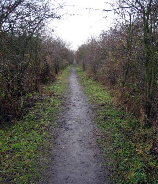 Footpath on the old railway track to Ponteland