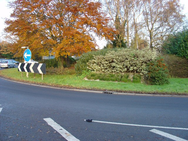 Cheals Roundabout - showing position of topiary sign.