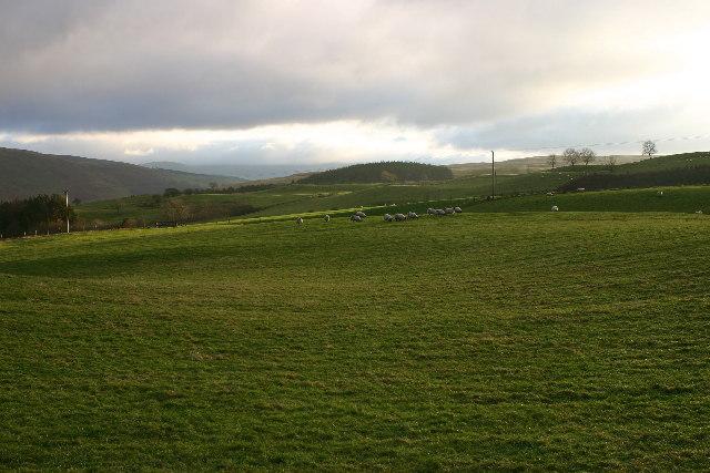 Near Craigdarroch