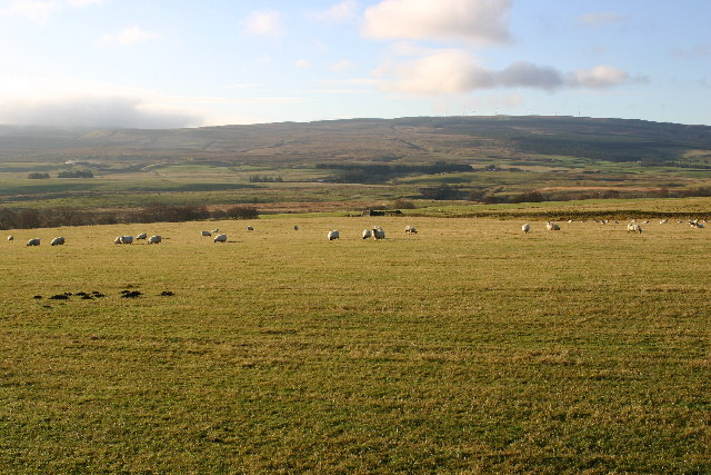 Farmland near Kirkconnel