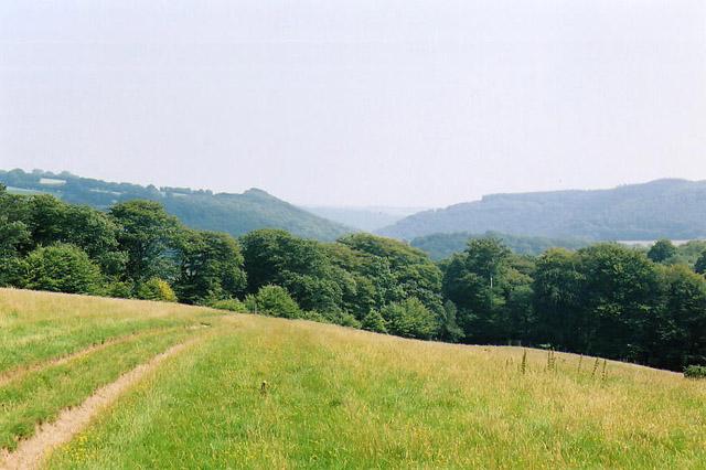 Withypool and Hawkridge: path leading to Marsh Bridge