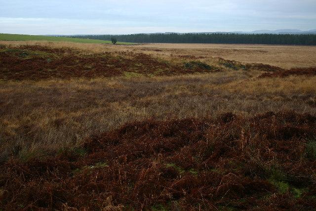 Moorland near Loch Ochiltree