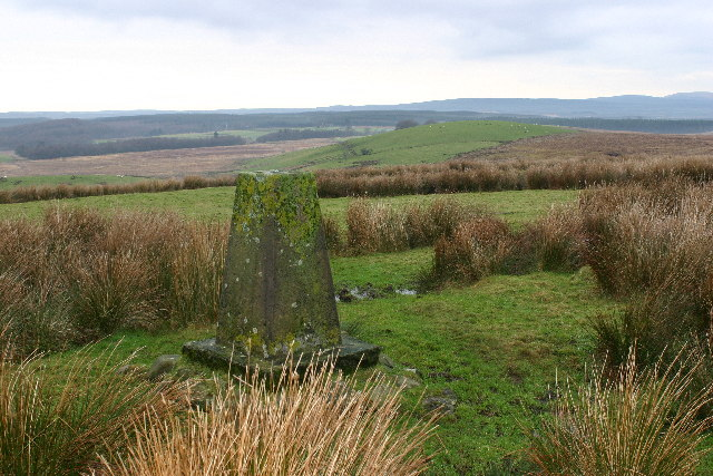 Cowar Mains Hill trig