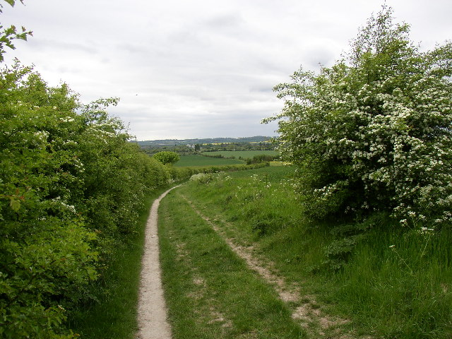 The Icknield Way in Holwell CP