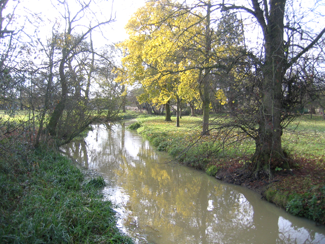 River Welland mill stream, Lolham, Peterborough