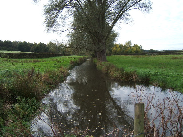 Stream near Chasemore Farm