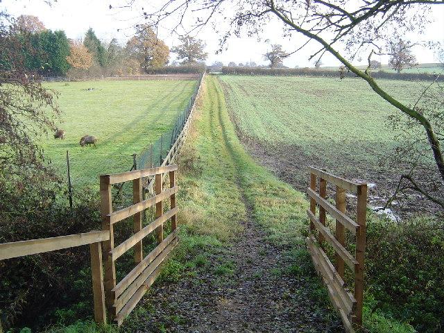 Elstree: Footpath to Hilfield Lane