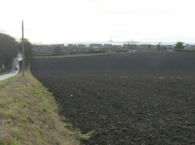 Fields by Lower Largo