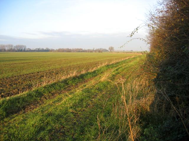 Farmland, Midfield, Oakington, Cambs