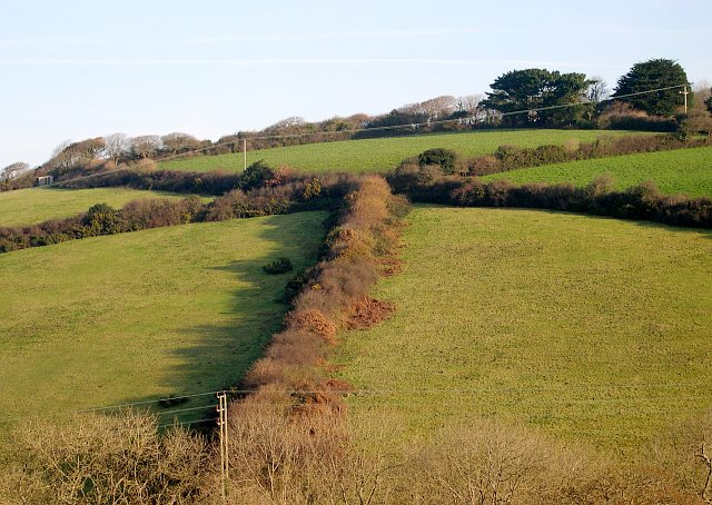Hillside east of Newmills Farm