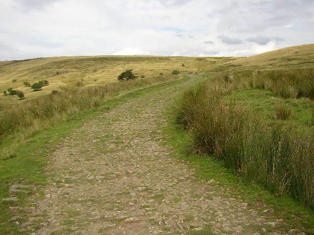 Old road above Watergrove, Wardle