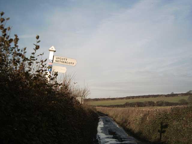 Cott Cross