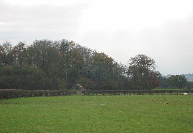 Old Plough Field.