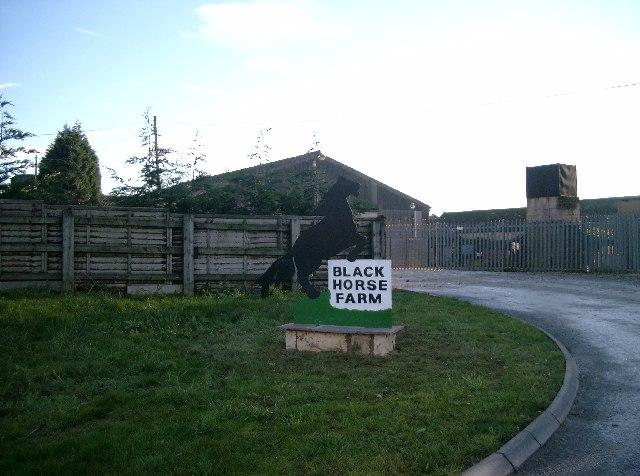 Black Horse Farm