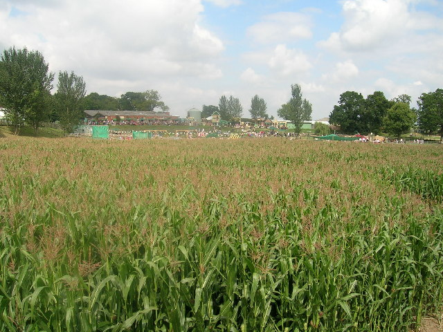 The Maize Maze at Hatton Country World