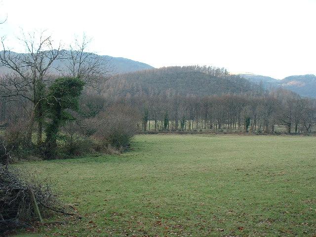 Redhow Wood