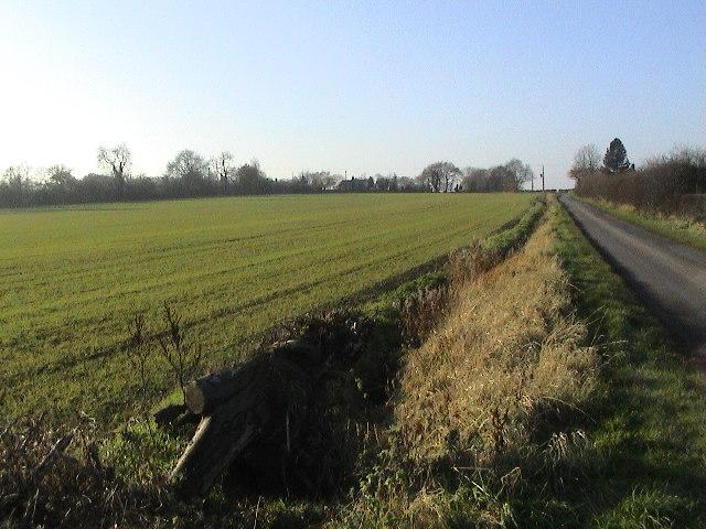 Branston Moor