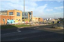 SD5505 : Fresh start in Kitt Green by David Long