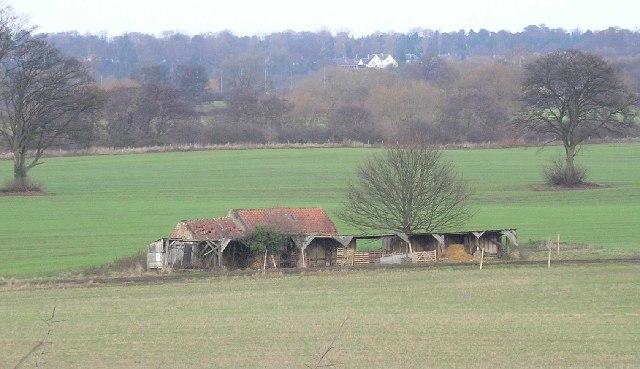 Old barn/shelter near Stapleton