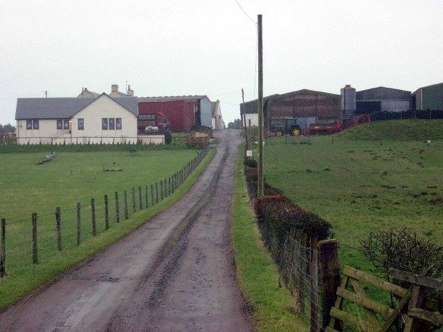 Windshields farm