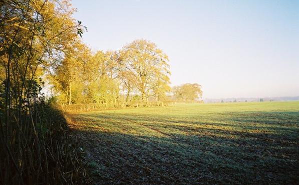 Farmland east of Parmoor