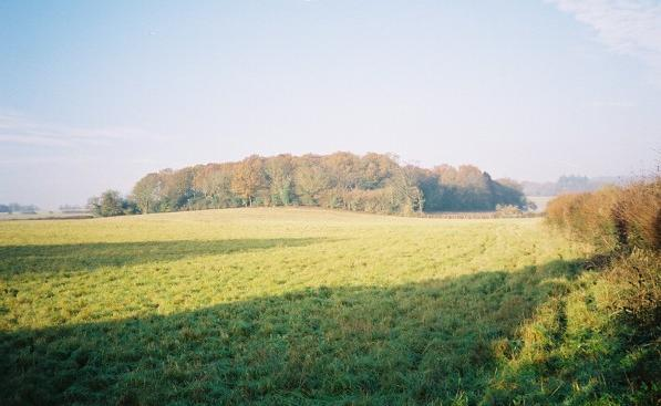 Farmland near Little Marlow