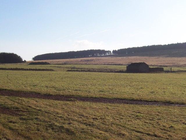 Sandwith Moor