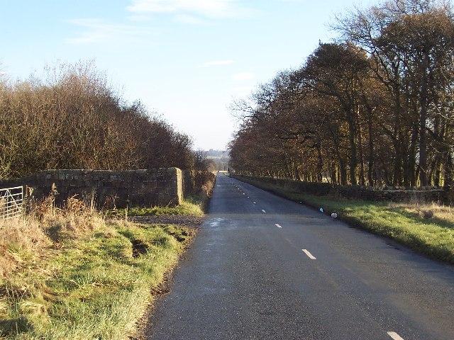 Norwood Lane III