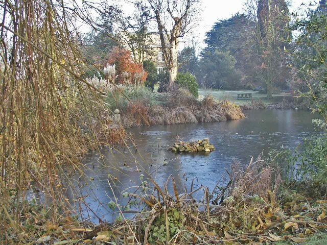 Lake at Myddelton House, Bulls Cross