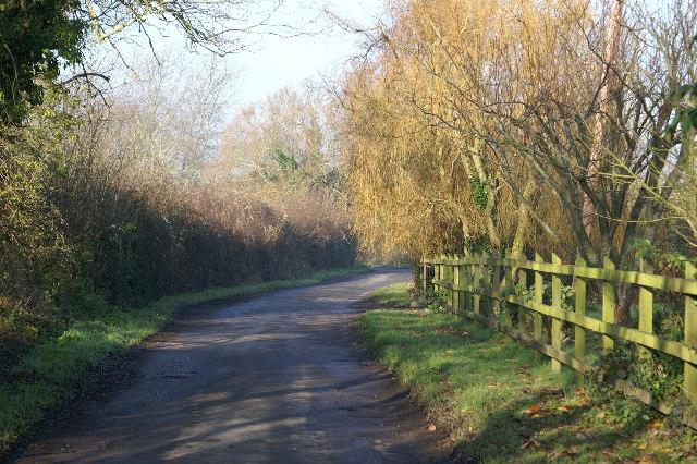Box Bush Lane