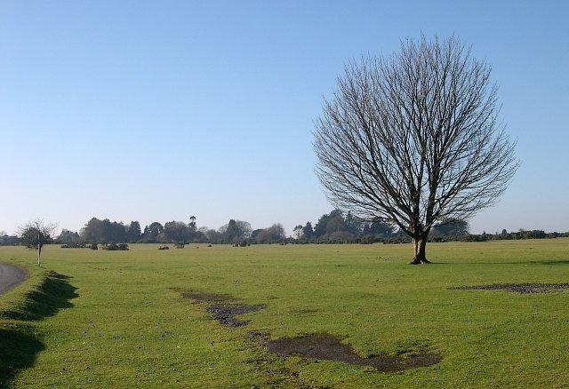 The remains of RAF Harrowbeer