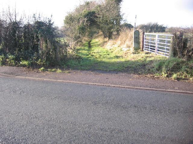 Overgrown Footpath.