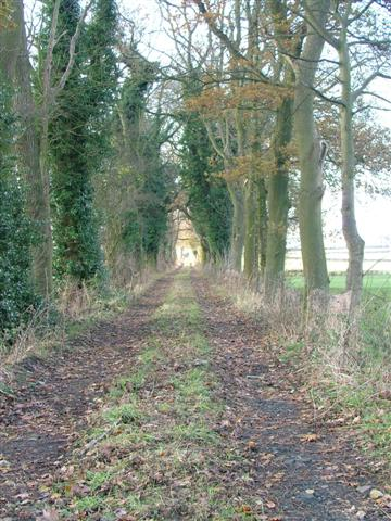 Track of Old Tramway from Kepwick Quarries