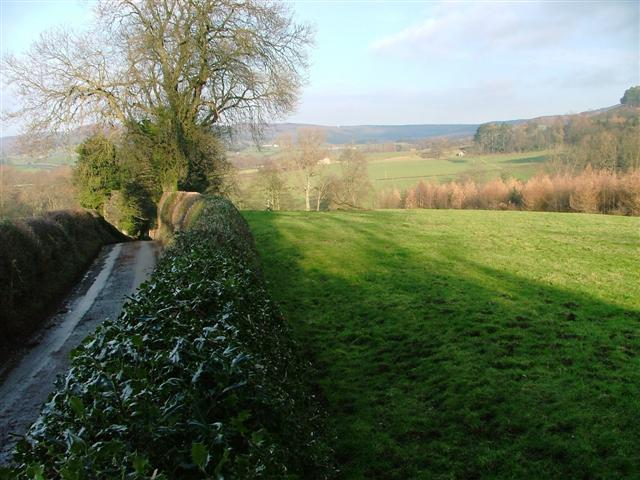 View North From Near Kepwick