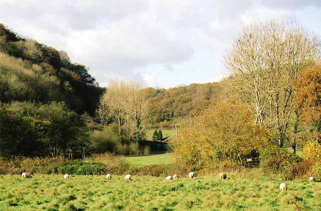 Tiverton: Exe valley near the site of Rock Mill